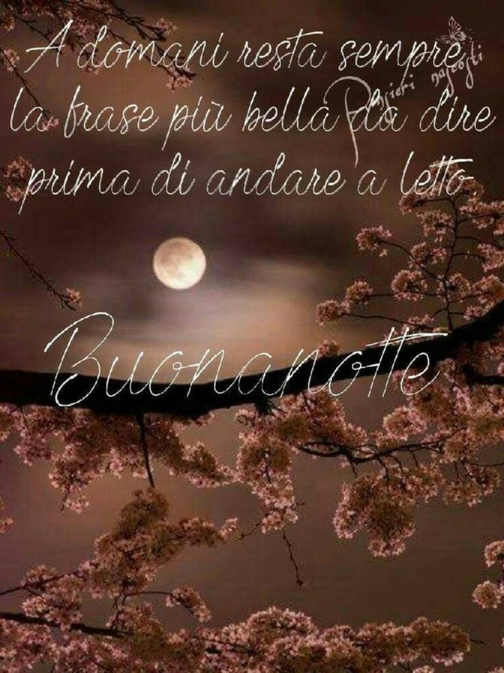 Buonanotte Bellissime Immagini 2188 Buongiornissimocaffe It