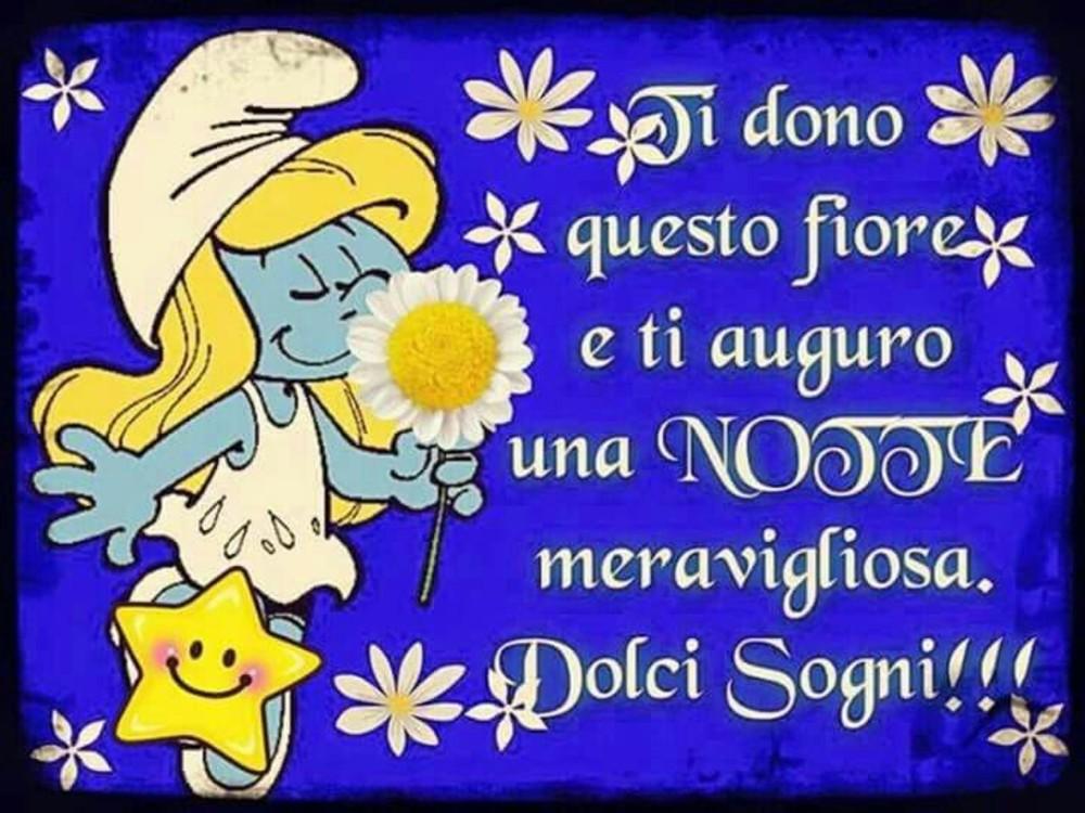 Immagini Buonanotte Divertenti 5025 Buongiornissimocaffe It