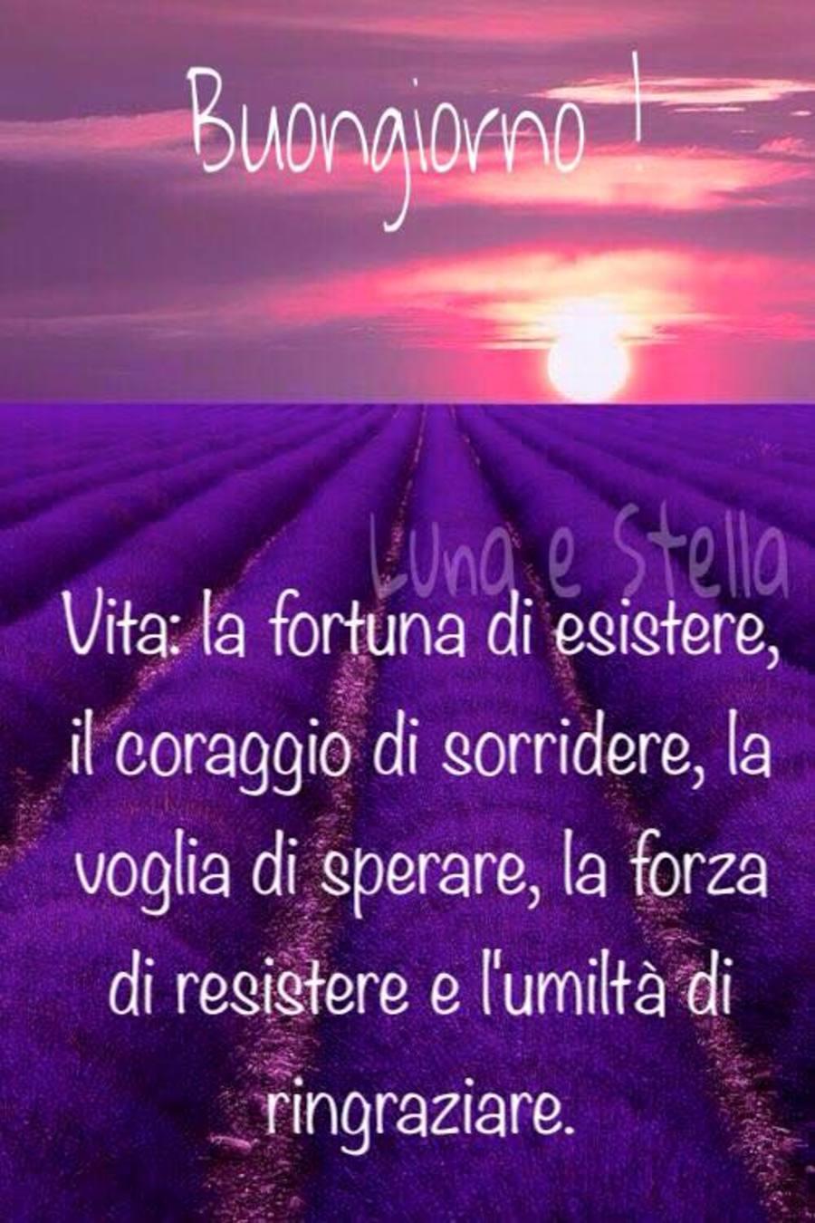 Immagini buongiorno gratis per whatsapp 6820 for Immagini gratis per whatsapp