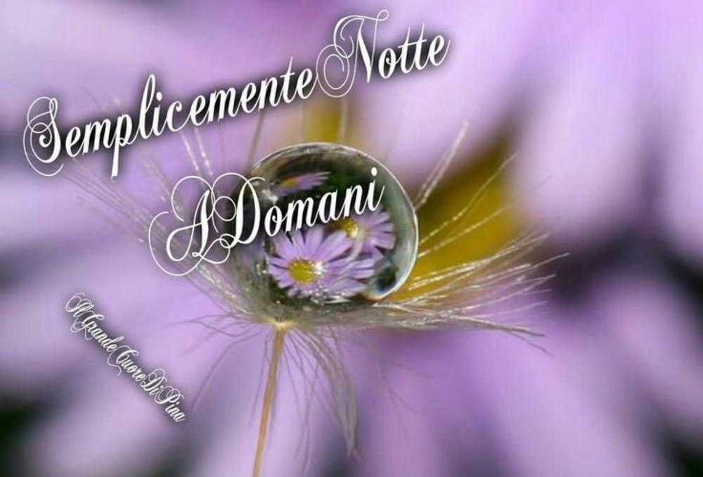Immagini Per Buonanotte Whatsapp Buongiornissimocaffe It