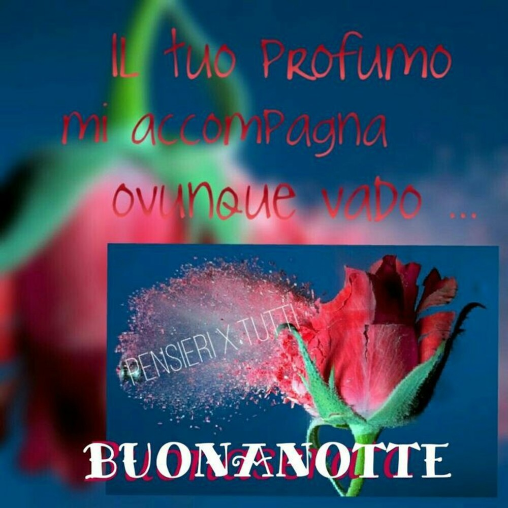 Immagini Per Buonanotte Amici 9044 Buongiornissimocaffe It