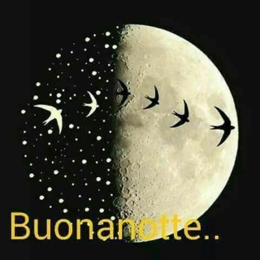 Immagini Per Buonanotte Amici 9146 Buongiornissimocaffeit