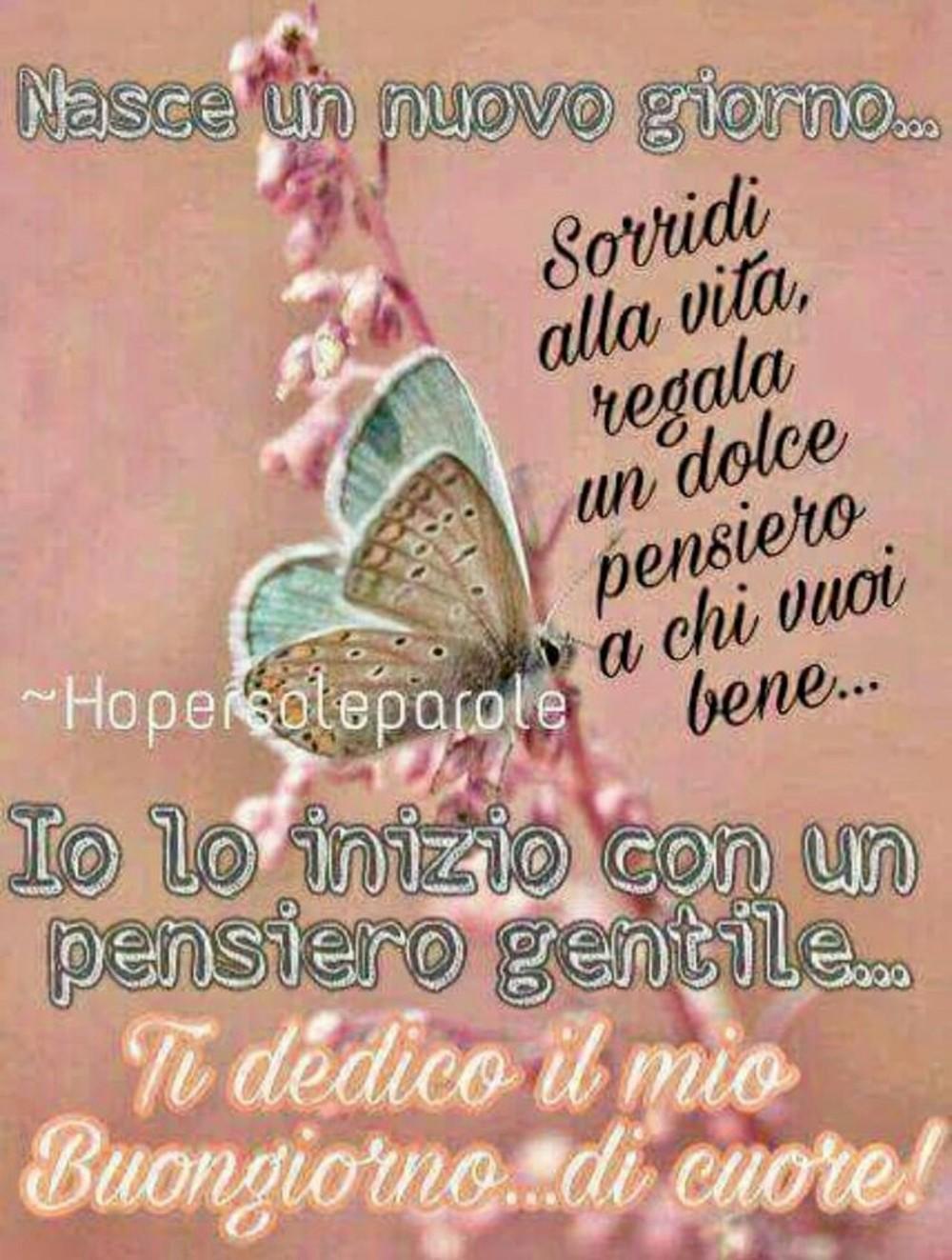 Immagini Per Buongiorno Con Farfalla Buongiornissimocaffe It