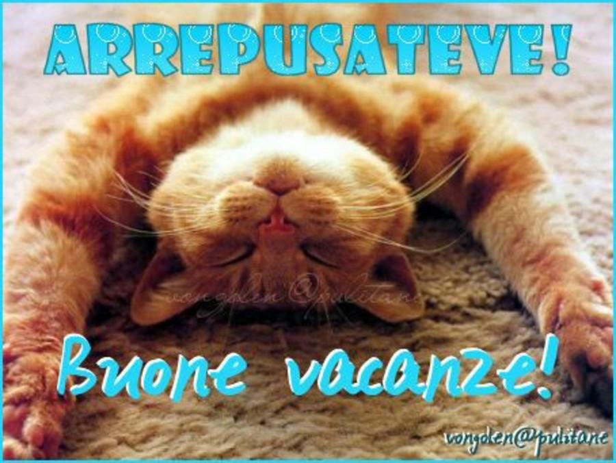 Buone vacanze immagini coi gatti 2 for Vacanze immagini