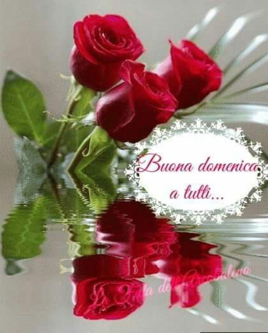 Felice Domenica 5058