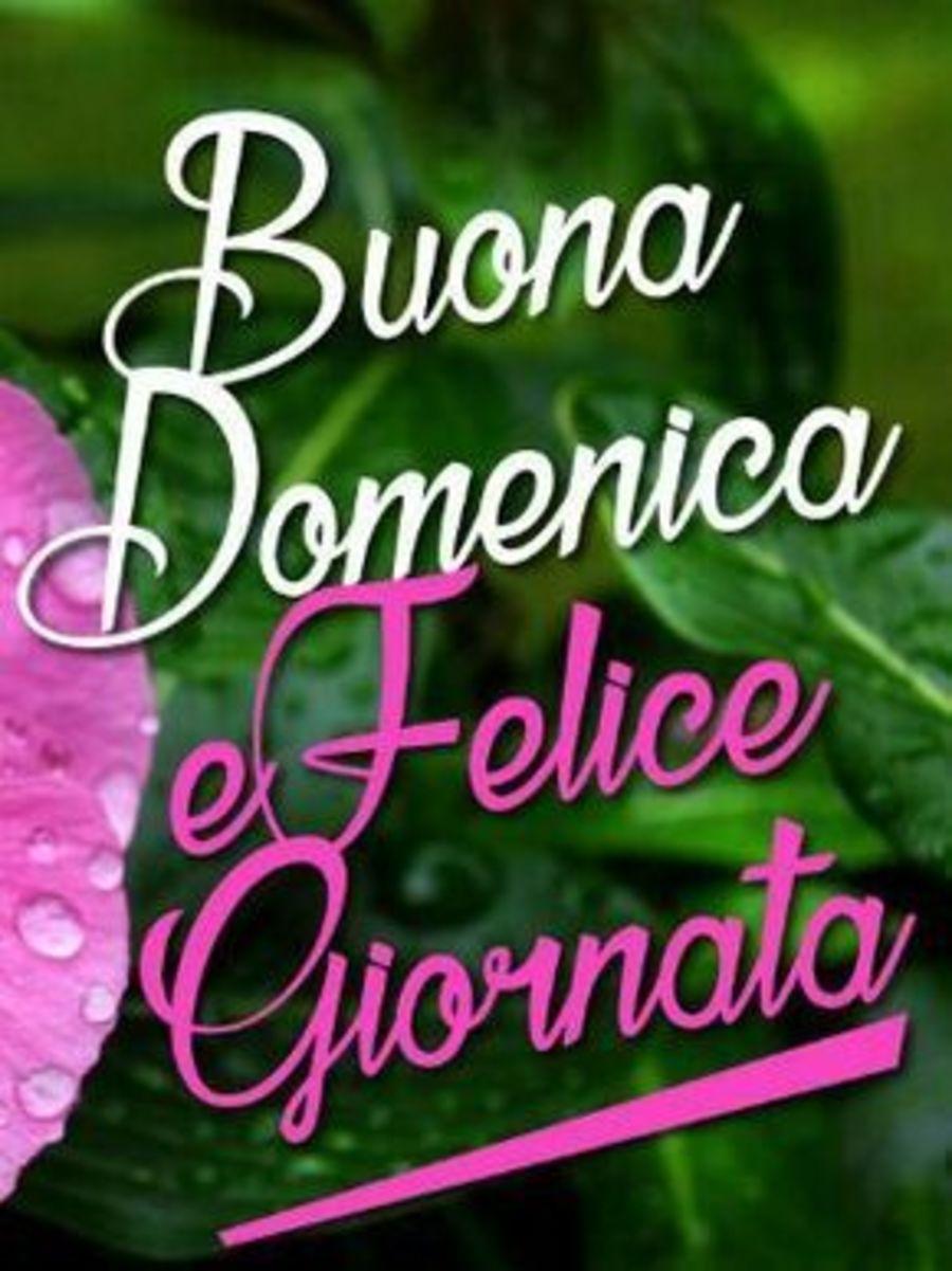 Felice Domenica 5073