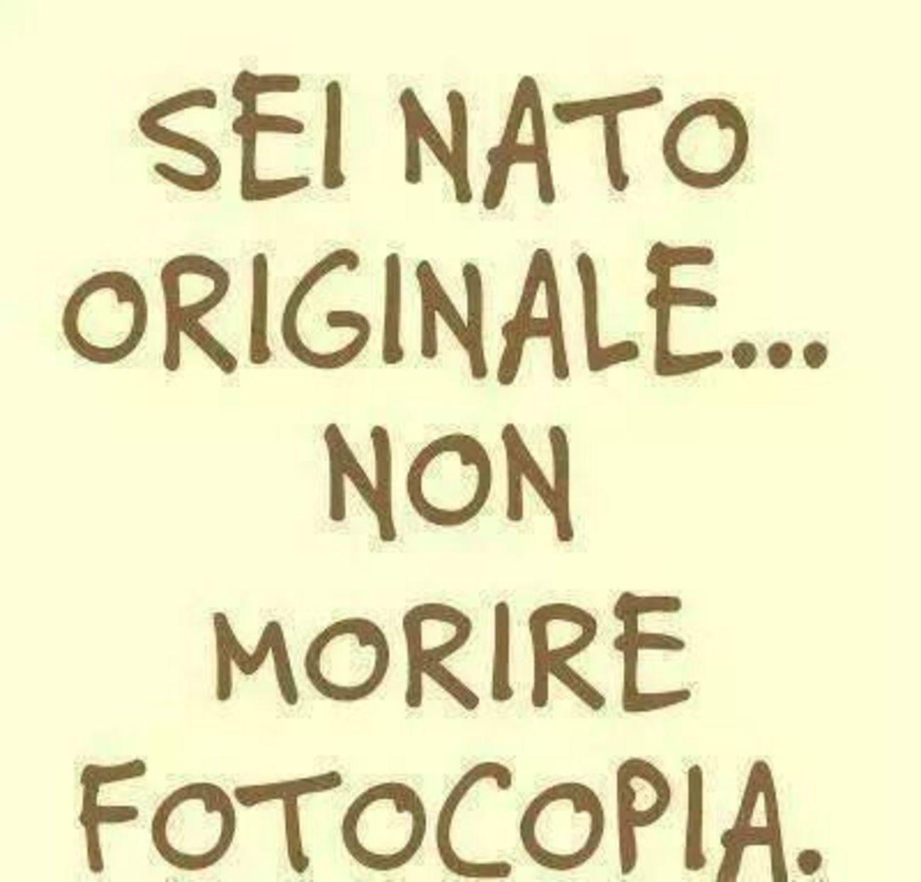 Immagini Con Frasi Ad Effetto Buongiornissimocaffe It