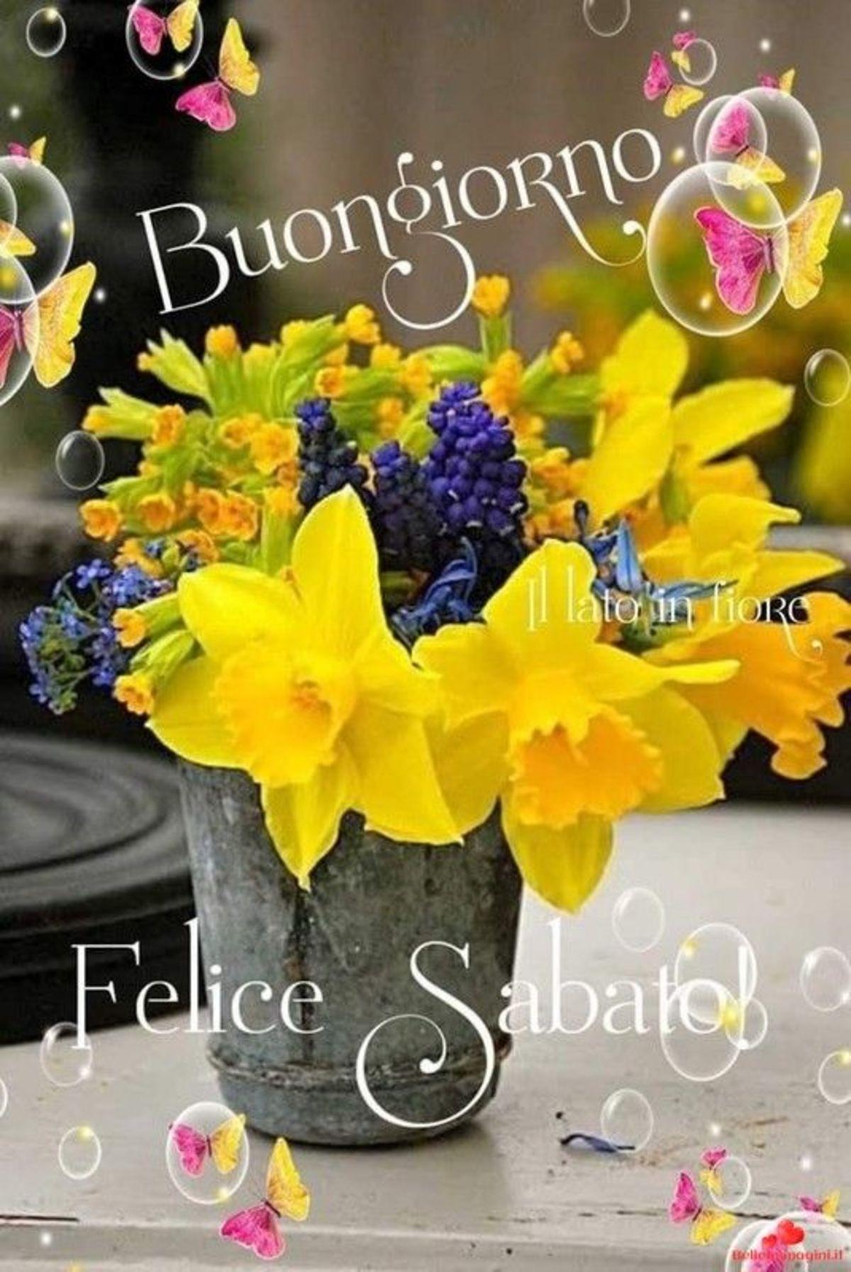 Buon Sabato Buongiorno Immagini Gif 6705