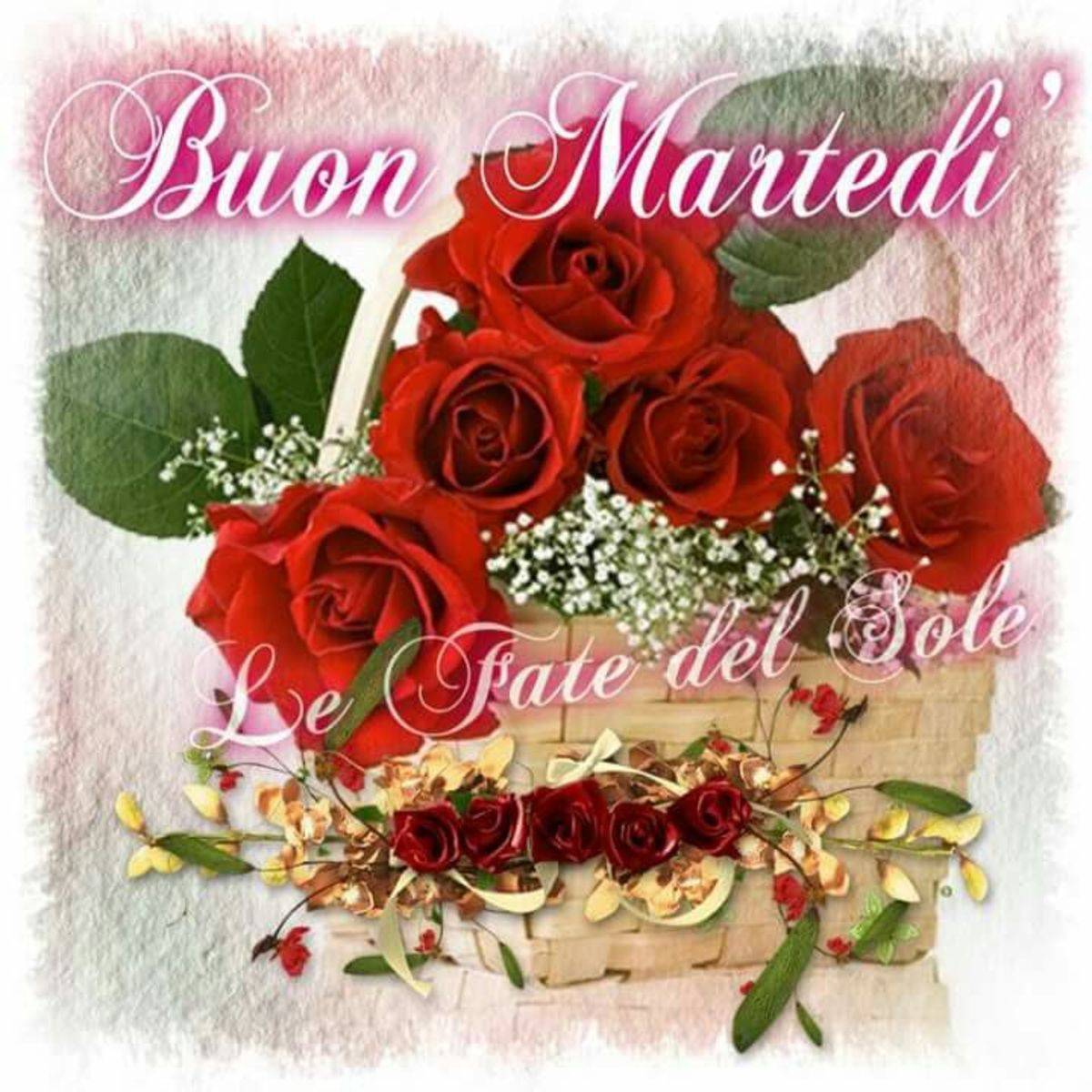 Martedi