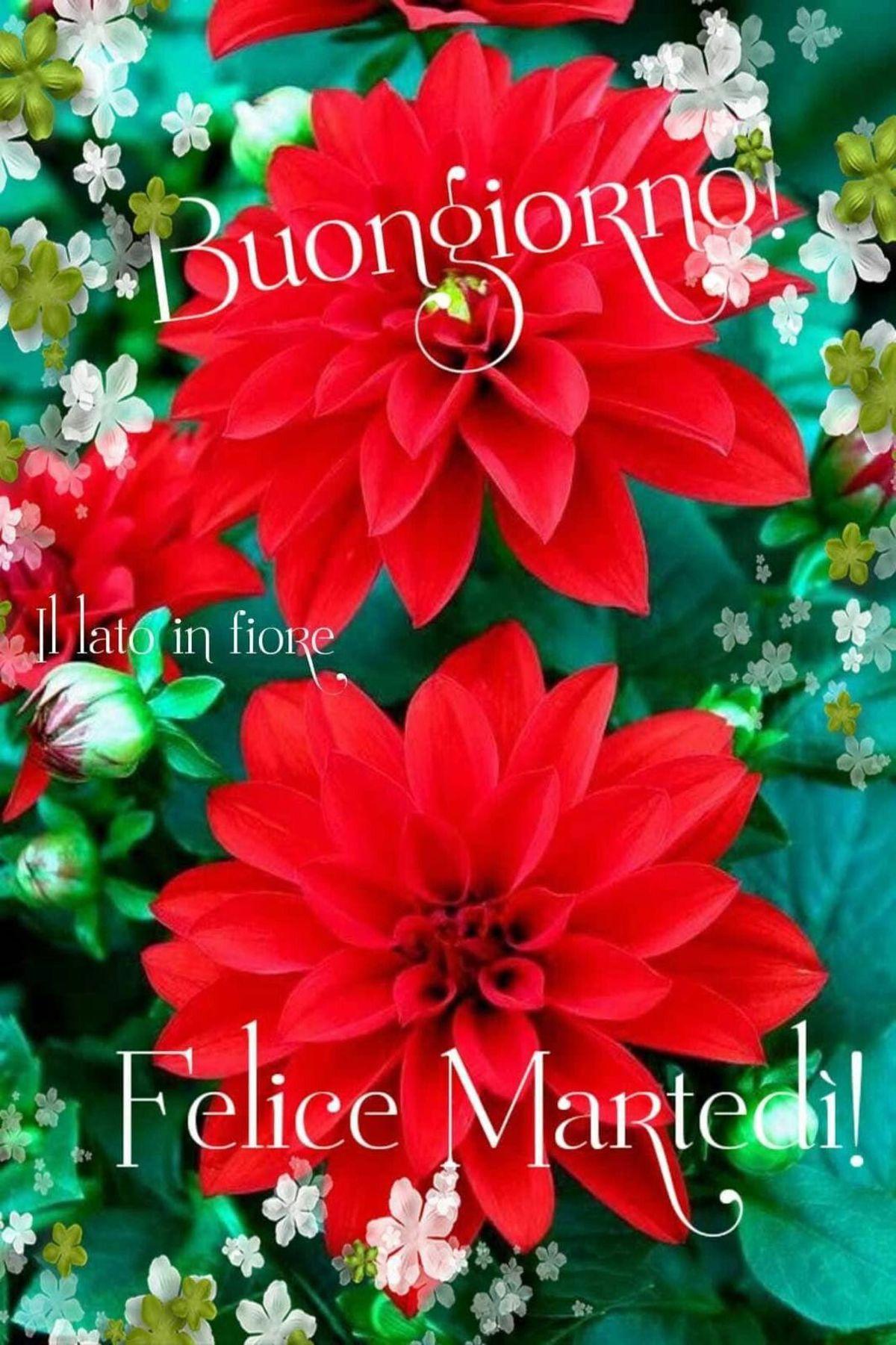 Cartoline Buongiornogood Morning Natalechristmas Il