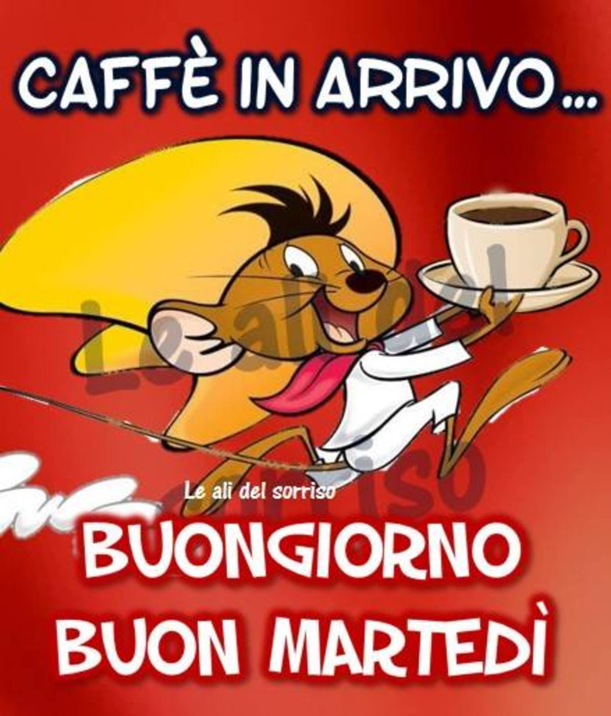 Caffè in arrivo Buon Martedì amici