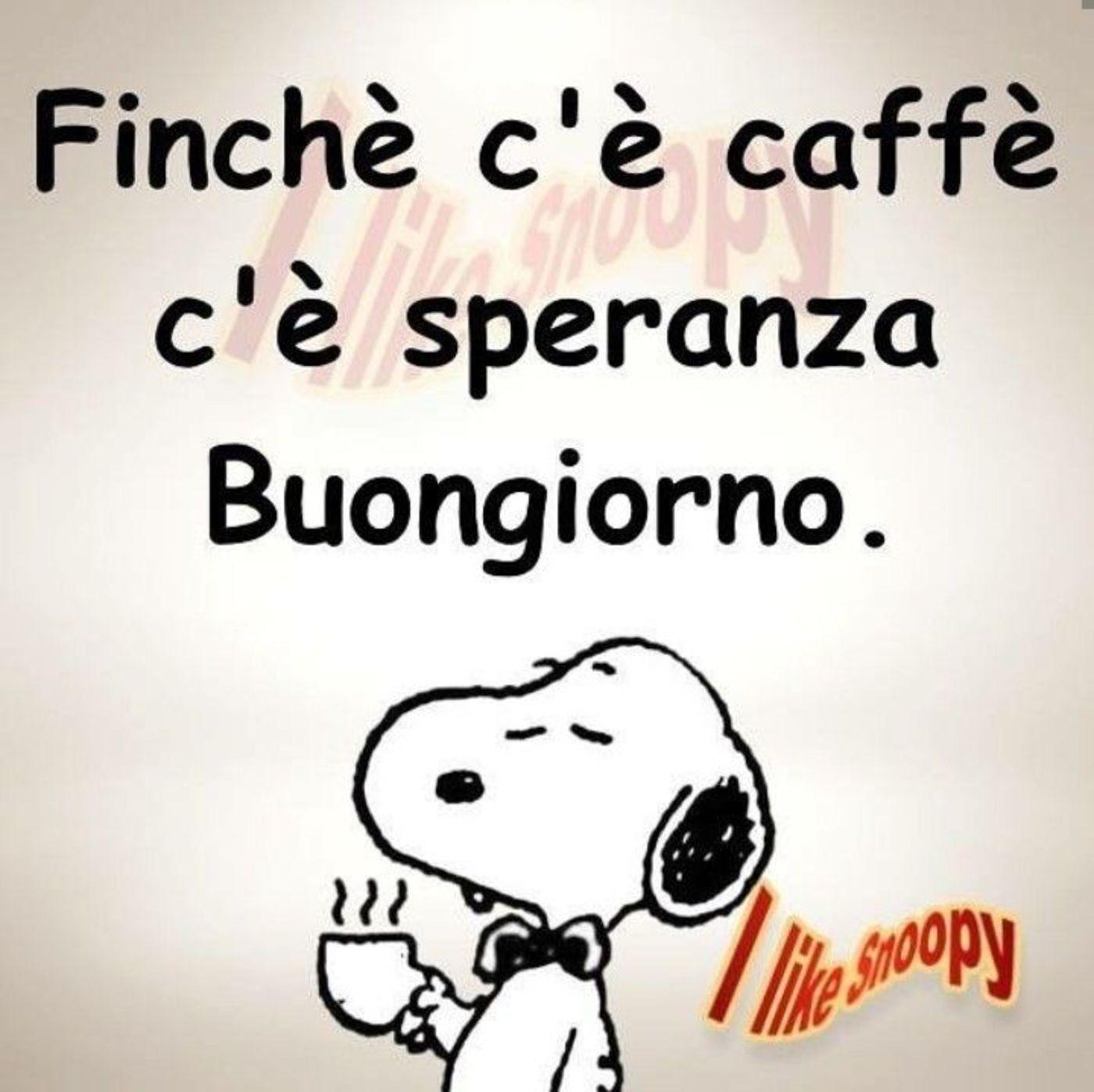 Immagini Per Buongiorno Da Ridere Buongiornissimocaffeit