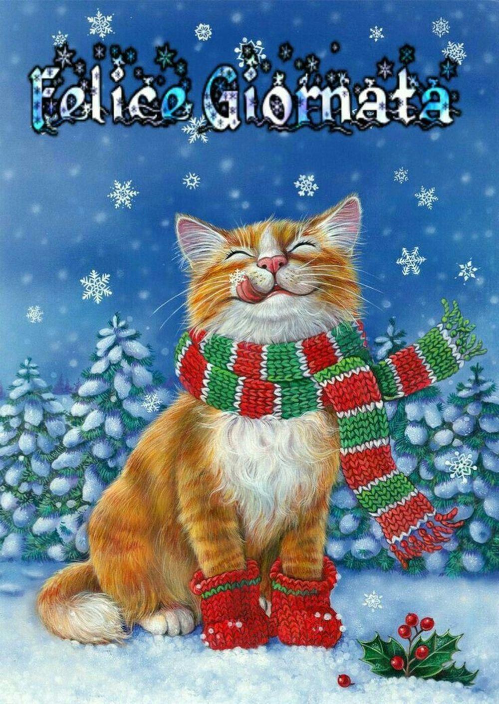 Immagini per dare il Buongiorno a Dicembre 3798