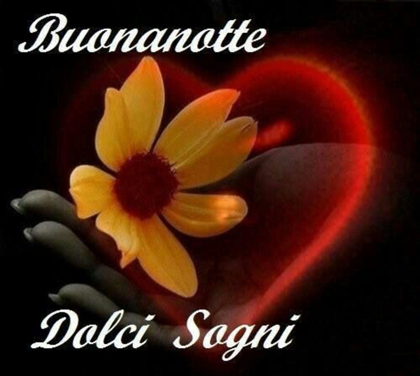 Buonanotte Amore Mio 7 Buongiornissimocaffe It