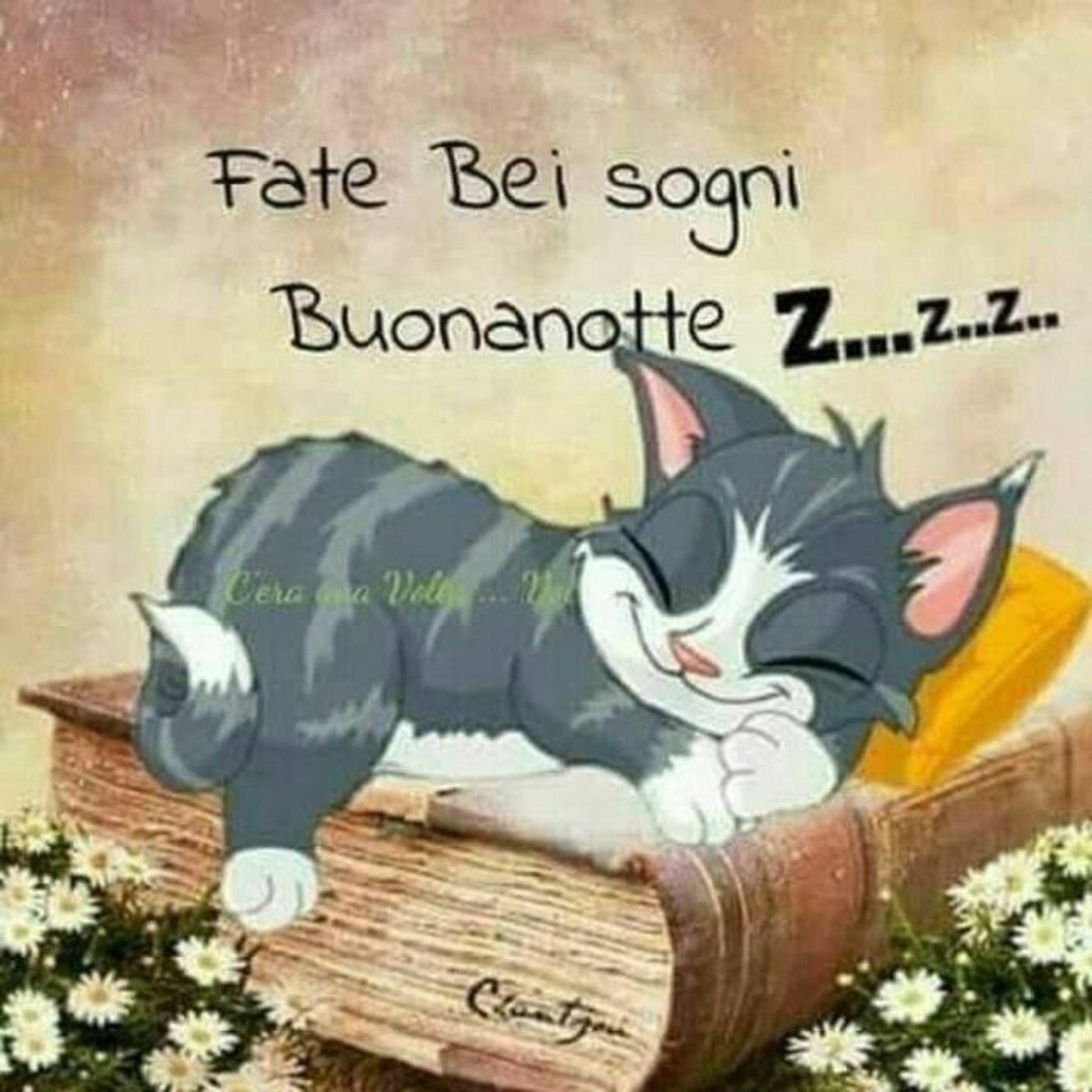 Buonanotte Belle Frasi Buongiornissimocaffeit