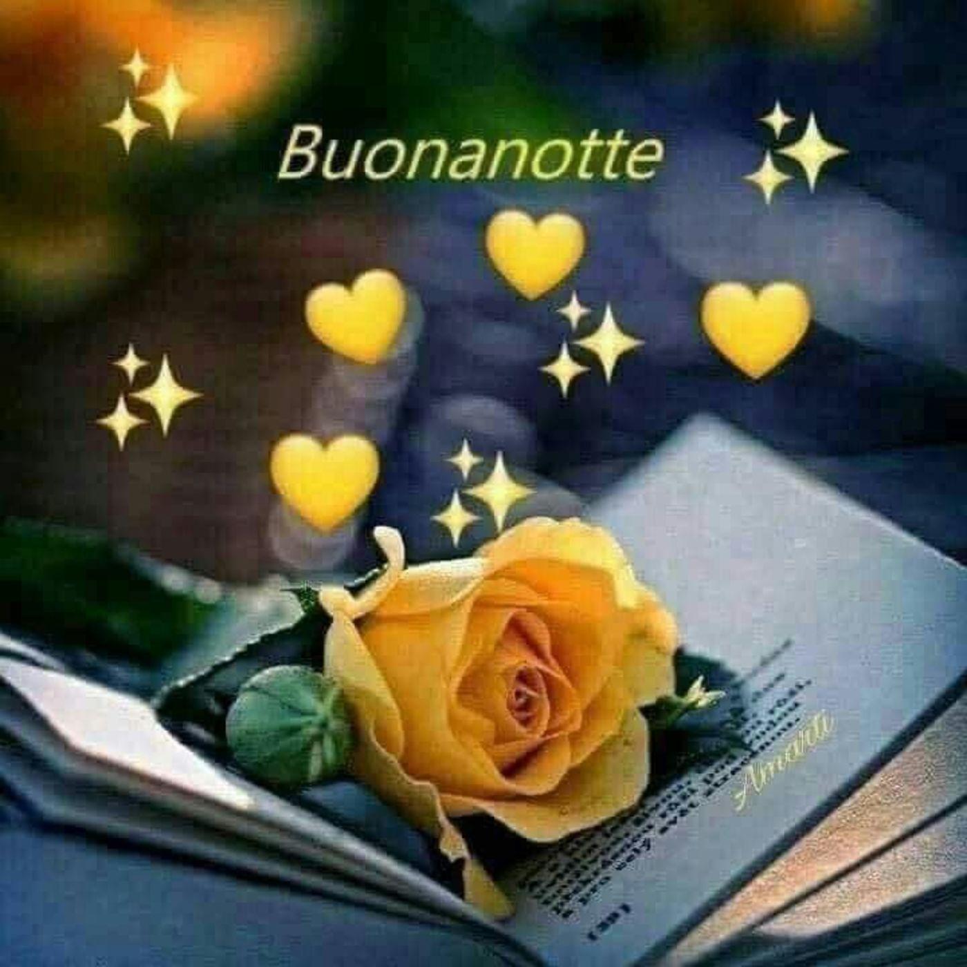 Buonanotte Immagini Gratis Coi Fiori Buongiornissimocaffe It