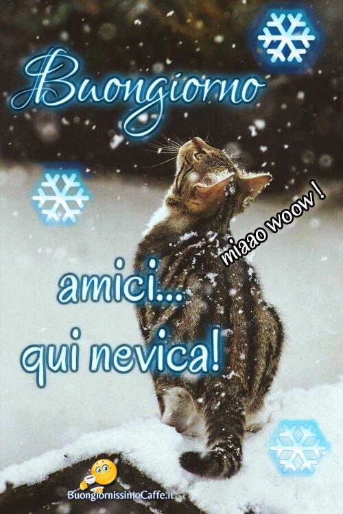 Foto Buongiorno Con La Neve.Buongiorno Nevica 2 Buongiornissimocaffe It