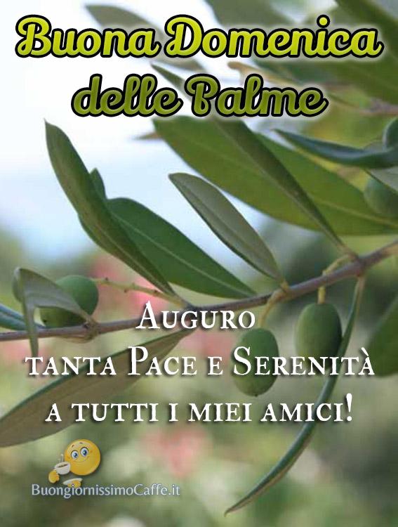 Buona Domenica delle Palme auguri amici